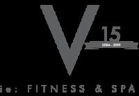 vie-logo-15-grey