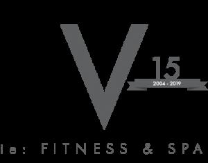 vie-logo-grey-15-380x300